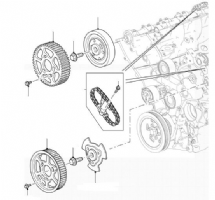 Camshaft Timing Chains & Wheels